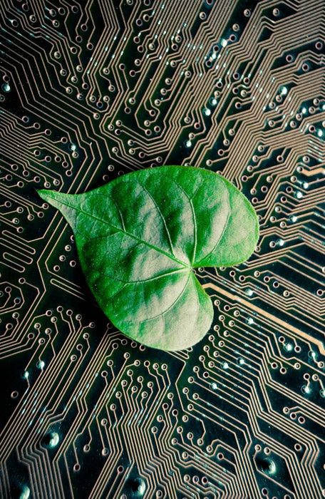 IT Marketing Ökologie bei Flix Group